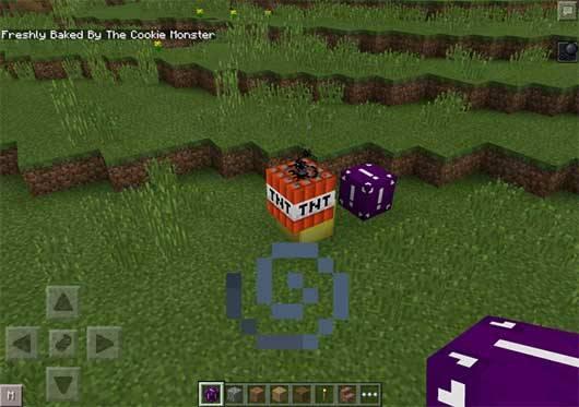 Random Block Mod - ��������� ����� � Minecraft PE