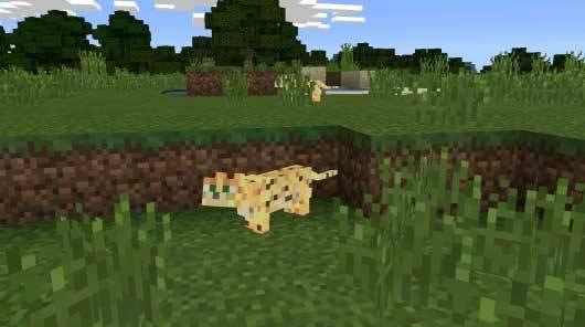 Ocelots Mod - Оцелоты в Minecraft PE