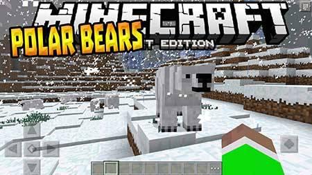 Polar Bears PE — Полярные медведи в Minecraft PE