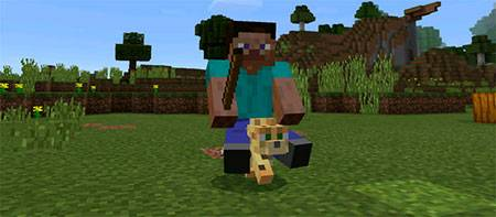 Мод Driveable Mobs для Minecraft PE
