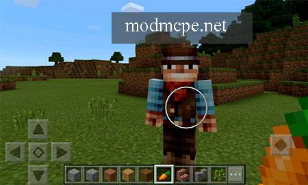 Мод No Nametag для Minecraft PE