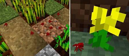 Мод Ants для Minecraft PE