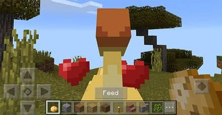 Мод Chocobos для Minecraft PE