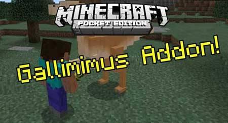 Мод Gallimimus для Minecraft PE
