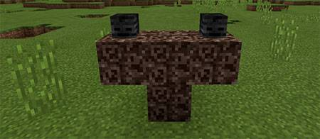 Crazy Wither mcpe 1