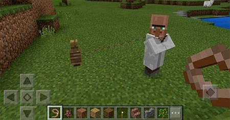 Move Villager mcpe 2