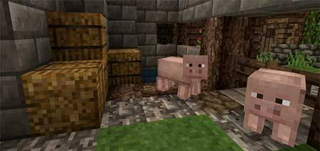 Beyond the Lands mcpe 7