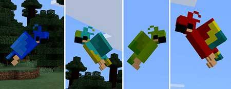 Parrot mcpe 1