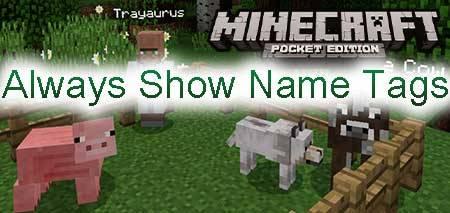 Мод Always Show Name Tags для Minecraft PE
