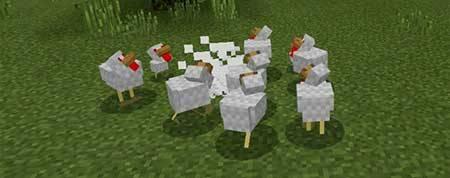Evil Chicken mcpe 3