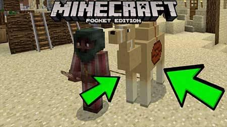 Мод Camel для Minecraft PE