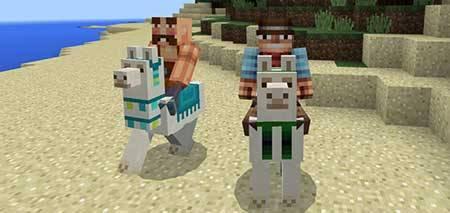 Controllable Llama mcpe 2