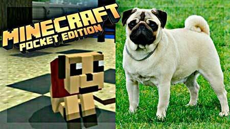 Мод The Pug для Minecraft PE