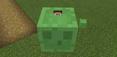 All Mobs Rideable mcpe 2