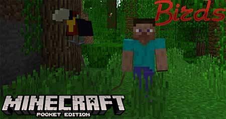 Мод Birds для Minecraft PE