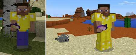 Alchemical Eggs mcpe 1