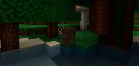 Pamplemousse mcpe 5