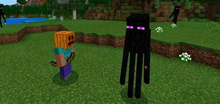 Enderman Pet mcpe 1