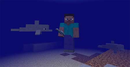 Dolphins mcpe 3
