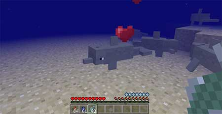 Dolphins mcpe 2