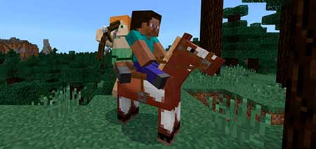2 Player Horse Riding mcpe 2