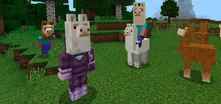 Llama Heads mcpe 1