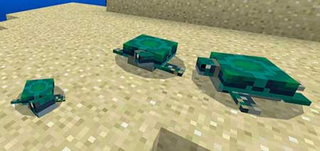 The Turtles mcpe 1