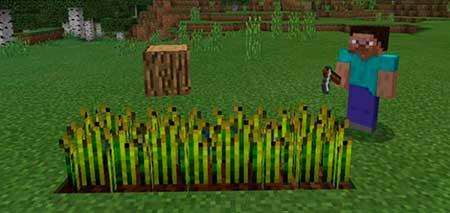 Minecraft Block Heads mcpe 1