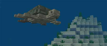 Mysterious SEA mcpe 3