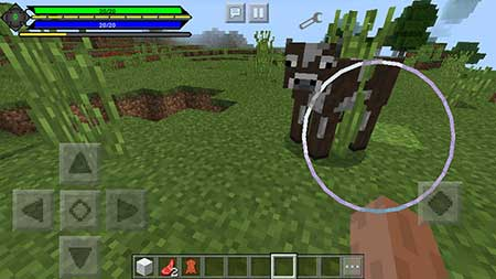 Pocket RPG (Gauge) mcpe 3
