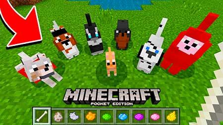 Мод More Dogs для Minecraft PE