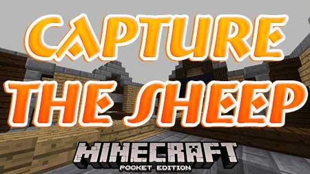 Карта Capture The Sheep для Minecraft PE