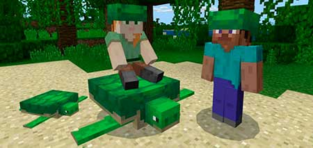 Turtle Plus mcpe 2
