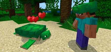 Turtle Plus mcpe 1