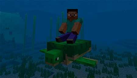 Turtle Plus mcpe 3
