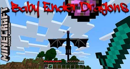 Мод Baby Ender Dragons для Minecraft PE