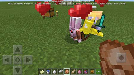 Magent And Pagent mcpe 5
