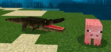 Alligator mcpe 1