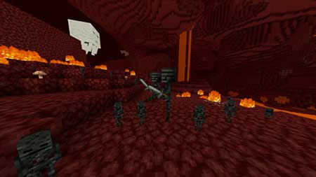 Baby Wither Skeletons mcpe 4