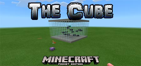 The Cube [1.13]